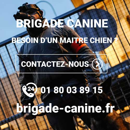 Maitre chien agence de sécurité privée brigade canine
